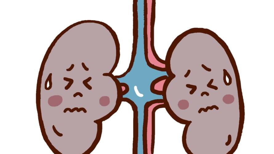 腎代替療法選択外来